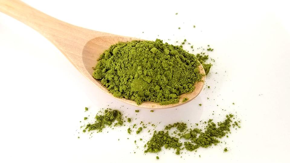 無農薬の粉末緑茶おすすめ7選